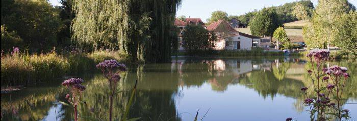 Domaine de L'etang de Sandanet, Bergerac, France, France hotels and hostels